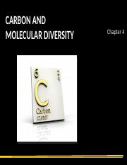 04S Carbon and Molecular Diversity.ppt