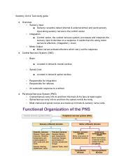 Anatomy Unit 4 Test Study Guide.pdf