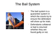 Week 7 Checkpoint The Bail System