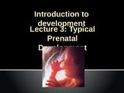 Lecture 2 Typical Prenatal Development