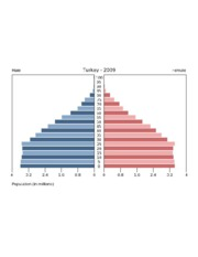 populationPyramid.php