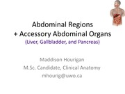 Lecture13_Accessory+Abdominal+Organs_1slide