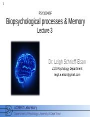 Biopsychology_2015_Lecture_3