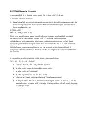Managerial Economics BEEG5013 Assignment 2.docx