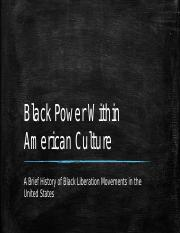 Black Power Within American Culture