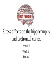 Lecture 7 Jan 28 Stress post.pptx