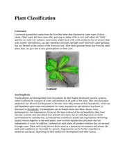 Plant Classificatio2