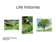Lecture 07-las-life_history