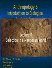 Lecture 6 Selection in a Medelian World.ppt