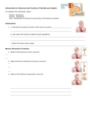 Worksheet on organization of NS 1
