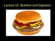 Lecture 12 - Nutrition and digestion POSTED