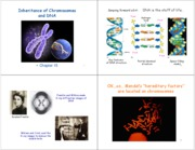 3_Patterns of Inheritance_Chromosomes
