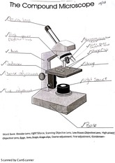 Microscope Assignment
