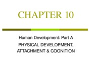Chapter 10, Physical Develoment and Cognition