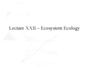 Lecture XXII - Ecosystem Ecology