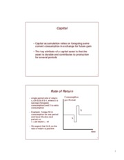 chap17.pdf - Lecture notes on capital