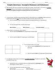 Vanet Belk - cellular_respiration_overview_worksheet (1 ...