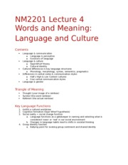 NM2201 Lecture 4 - Language and Culture