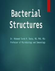 Bacterial structure and Normal flora (3)