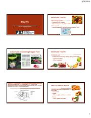 Lecture 7-Fruits-Multiple Slides