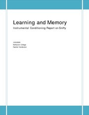 LEARNING AND MEMORY - INSTRUMENTAL SNIFFY
