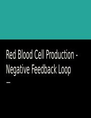 Red Blood Cell Productions.pptx