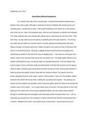 Discriptive writing Assignment