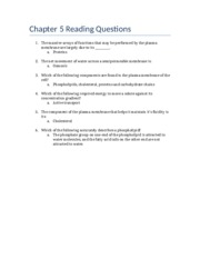Chapter 5 Reading Questions.docx