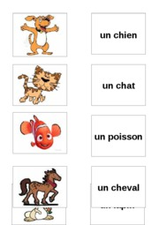 french_pet_pairs