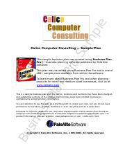 ComputerConsulting_Live.pdf