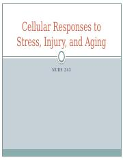 Cellular Responses to Stress, Injury and Aging Chapter 2