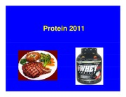 1pp Protein 2011 _Compatibility Mode_