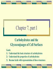 Chapter 7 Carbyhydrates (2).pdf
