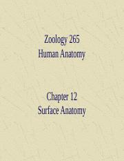 ch 12 - surface anatomy.ppt