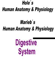 Lecture 12 Digestive System 2012 short ver