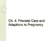 Ch. 4 - Prenatal Care & Adaptations to Pregnancy
