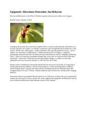 Epigenetic Alterations Determine Ant Behavior 17.pdf