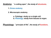 Anatomy and Physiology 2: Endocrine System