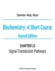 Chapter 13 lecture Leverett.ppt