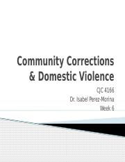 Community Corrections  Domestic Violence