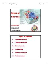 CH 1 - cell injury V Types of necrosis [Compatibility Mode].pdf