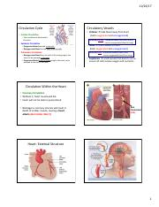411 Nov 30, 2017 (Blood components and vessels).pdf