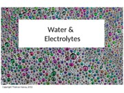 NUTR3362_Lecture11_water_elecs_posted