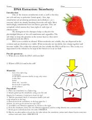 Strawberry Dna Extraction Lab Write Up - The Effect of ...