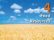 0538735600_357119food resources