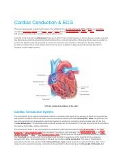 CH.19 Lab. Lecture Cardiac Conduction Bluedoor.docx
