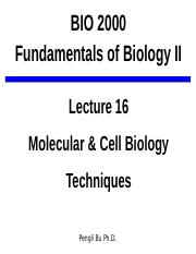 Lecture_16_Molecular and Cell Biology Techniques.pptx