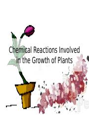 Chemical Reactions Involved in the Growth of Plants