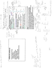 CH 460 Chapter 12-Pentose Phosphate, Glycosidic Bonds, and Dissacharides Outline and Notes