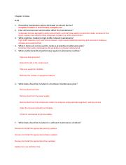 Chapter 4 Notes.docx